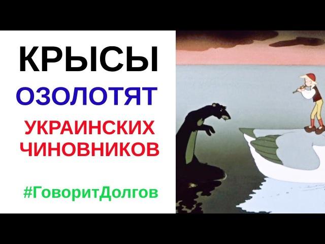 Как скрысить на борьбе с крысами Опыт Украины