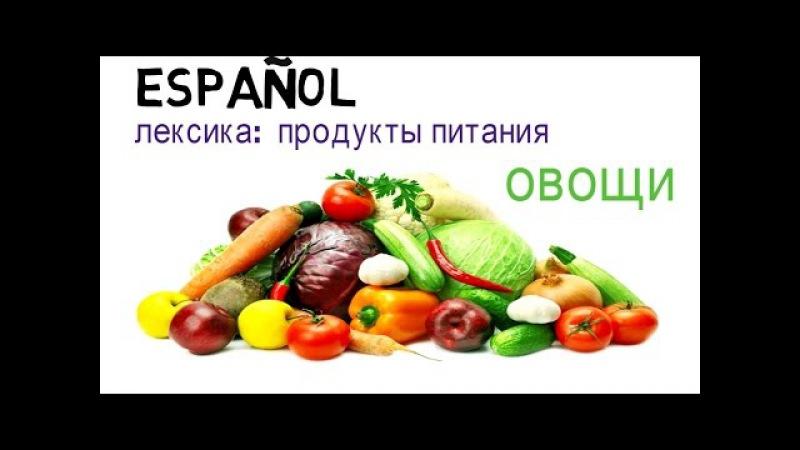 Учим испанский язык. лексика. продукты. овощи, зелень и бобовые