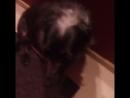 воспитанная собака моет лапы