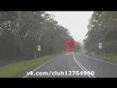 Медведь едет автостопом
