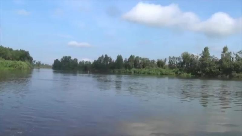 Сплав и рыбалка на таежных реках 2016 Чая Обь Нярга yaclip scscscrp