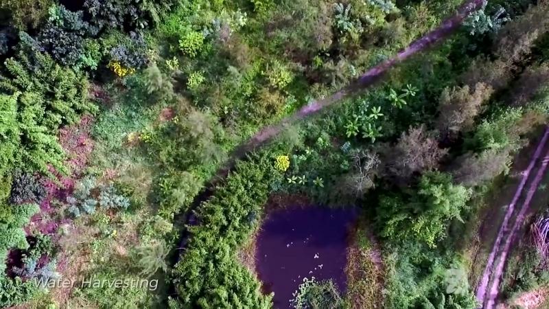 Пермакультурная ферма Джеффа Лотона Zaytuna Farm в Австралии!