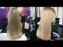 Восстановление волос с помощью стволовых клеток дерева Арганы