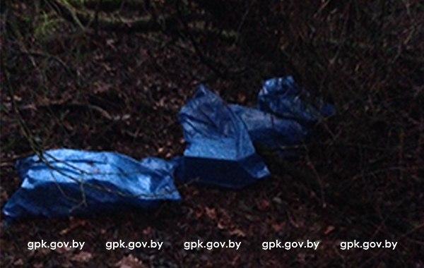 Нестандартный канал контрабанды из Беларуси в Польшу пресечен пограничниками