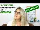 5 CURIOUS Expressions in English | Vocabulary | Eng