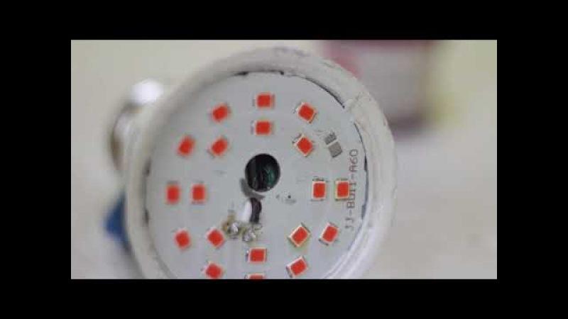Не выбрасывайте нерабочие лампочки. Ремонт фитолампы [© Игорь Шурар 2018]