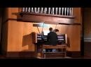 Майкл Джексон Песня Земли орган - Юрий Соляников