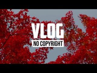 Cjbeards - Ruby (Vlog No Copyright Music)