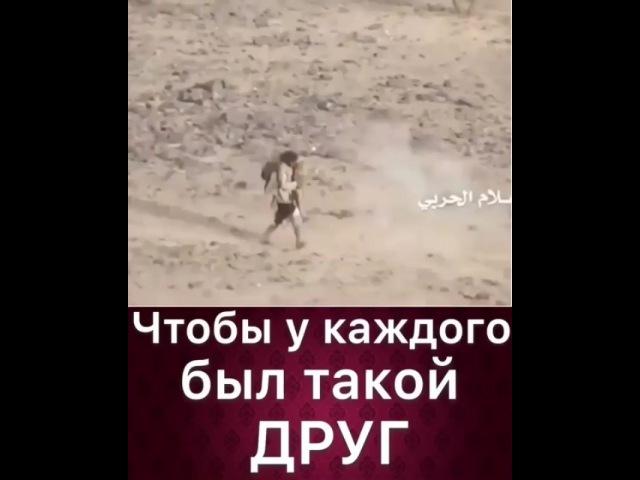 """Руслан Курбанов on Instagram: """"Смотрите что мне прислали."""""""