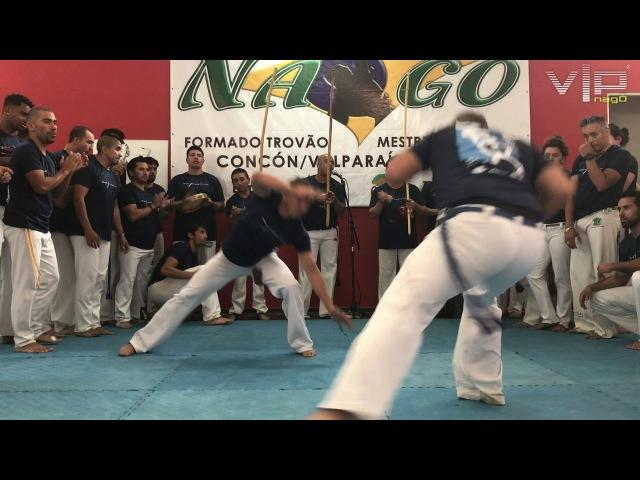 Evento chile 2018 Mestre pequines c m voador