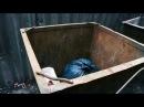 """""""В Бийске нашли младенца в мусорном баке"""" (05.10.2017 г., Бийское телевидение)"""