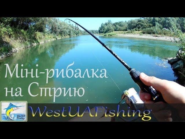 Міні-рибалка на річці Стрий 12.08.2017р. (Рибалка на Західній Україні)