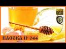 Как правильно кушать Сотовый Мёд. Как хранить мед в сотах в домашних условиях.