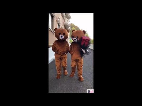 Cười té ghế với đàn gấu lầy lội đang làm loạn trong Tik Tok| EP 18