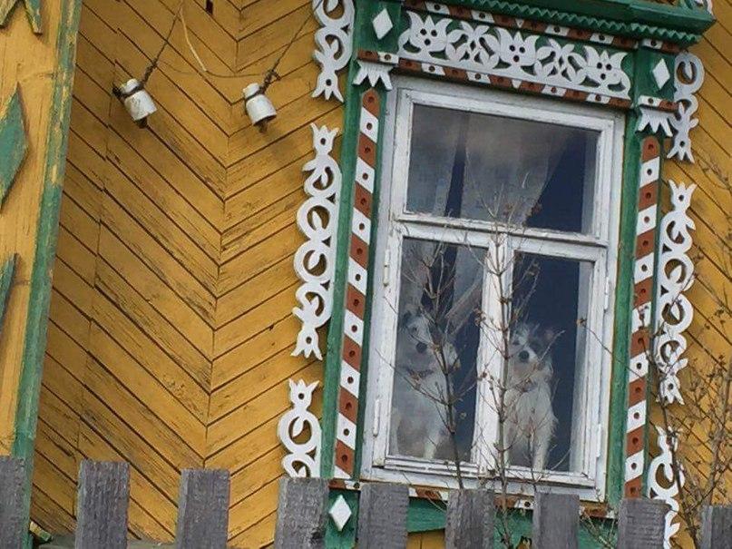 Вера Агапова | Москва