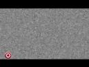 Демис Карибидис, Андрей Скороход и Антон Лирник - Случай в Амстердаме online-video-cutter