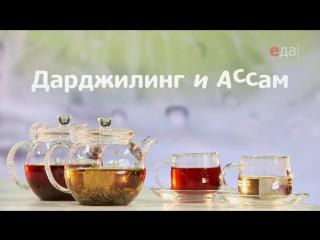 Про индийский чай. Ассам и Дарджилинг