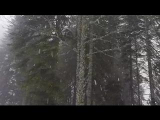 Sochi mysterious views😍