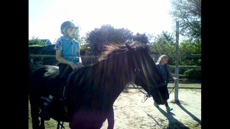 Семейный конный клуб Живая тропа. Панин Влад (ДЦП, 12 лет) осваиваем рысь. Май 2018.1