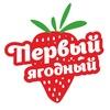 Первый ягодный в Челябинске