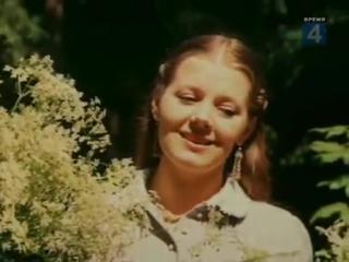 Людмила Сенчина Полевые цветы