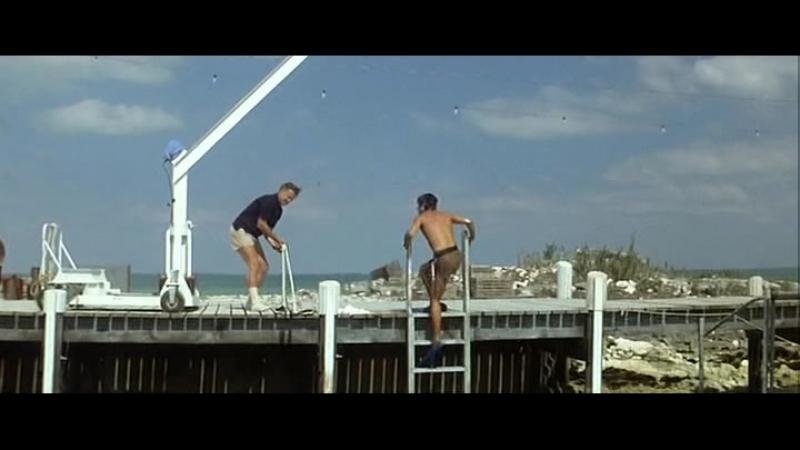 День дельфина (США, 1973) фантастика, Джордж С. Скотт, реж. Майк Николс, советский дубляж без вставок закадрового перевода