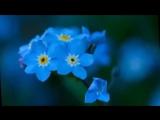 أغنية روسية مترجمة.mp4