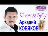 Аркадий КОБЯКОВ - Я не забуду (Красноярск, 2014)