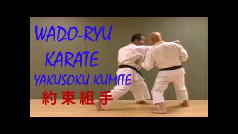 Wado - Ryu Yakusoku kumite - Tatsuo Suzuki 和道流 (約束組手)