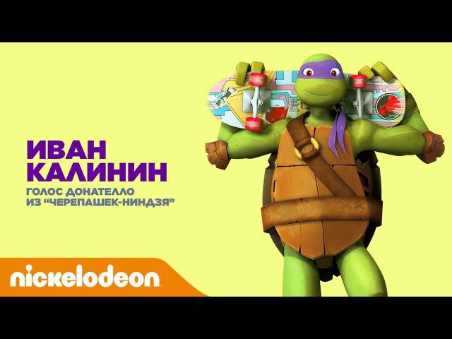 Актёры дубляжа Nickelodeon | Иван Калинин - Донателло из Черепашек-ниндзя | Nickelodeon Россия