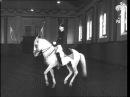Dancing Horses (1946)