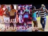 BACHATA Musica y Baile! Se Lleva en La Sangre! Que Viva!
