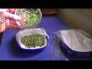 """Выращивание микрозелени на """"гидропонике"""""""