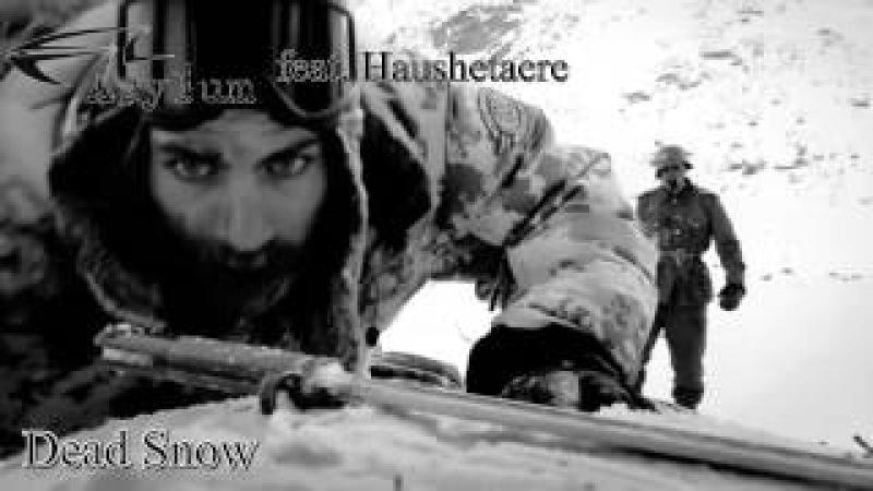 HausHetaere feat. Acylum - Dead Snow