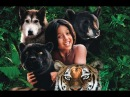 Книга джунглей История Маугли - Приключения / семейный / США / 1998