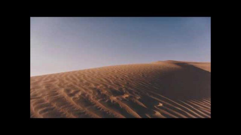 Karnamrita Dasi - Devaki (The Bassment Remix)