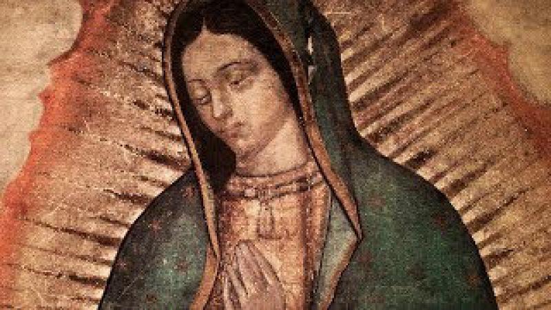 Homilia Diária 715 Festa de Nossa Senhora de Guadalupe