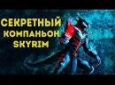 Секретный компаньон в Skyrim!