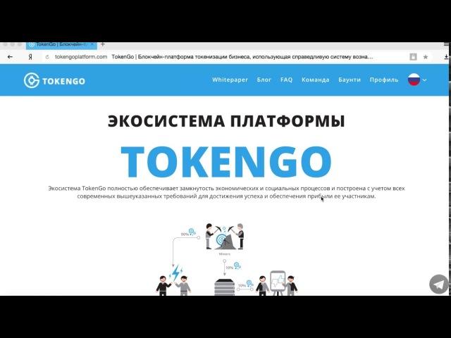 Детальный обзор TokenGo