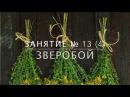 Школа травоведения - Занятие № 13(4) ЗВЕРОБОЙ против отчаяния