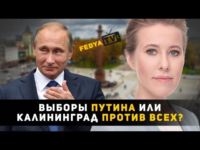 Выборы ПУТИНА или Калининград ПРОТИВ ВСЕХ? (независимый опрос)