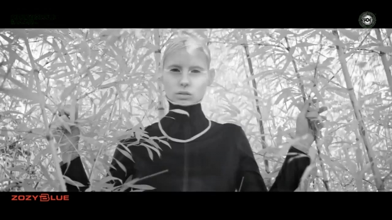 Liam Wilson Dan Dobson - Totally [FSOE Clandestine] [Promo Video]