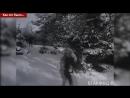 праздник зимы 1962