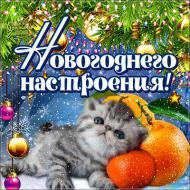 Новый год Зима Привет Настроение Позитив Друзьям