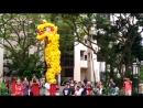 Lion Dance 2018