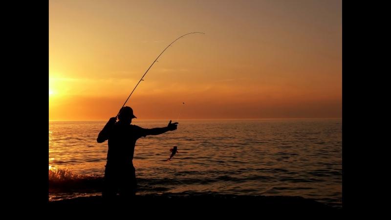 Русская рыбалка 4 : Фармлю на р.Волхов ( Донки )