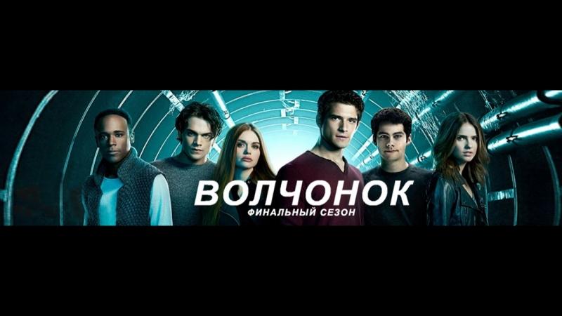 волчонок 6 сезон 1 2 3 4 5 6 7 8 9 10 11 серии смотреть онлайн без регистрации
