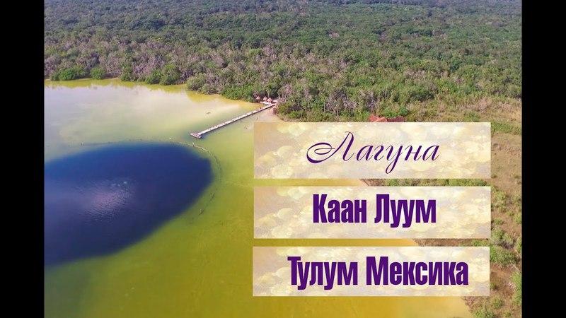 Лагуна Каан Луум Тулум Мексика. Лагуна с сенотом. Видео с дрона/аэровидеосъемка. » Freewka.com - Смотреть онлайн в хорощем качестве