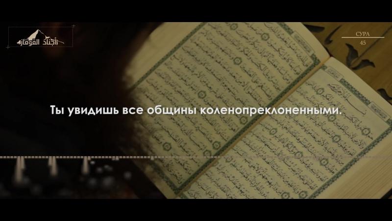 """Читает Муджахид из Аджнад аль-Кавказ. Сура 45 """"Коленопреклонённые"""""""