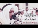 سورة الحجرات الشيخ أحمد النفيس Surah Al Hujurat Al Sheikh Ahmad Al Nufais
